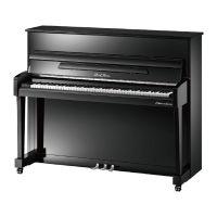 珠江(Pearl River) EP系列 黄芯弦槌 进口钢线 钢琴 EP2(黑色)